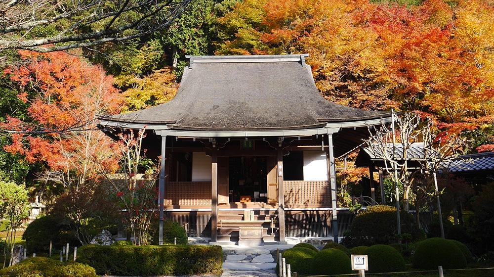 トップ画像:秋(本堂)
