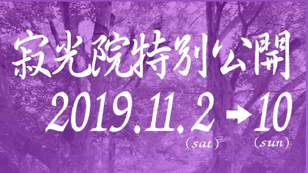 特別公開2019秋